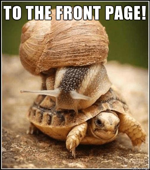 WordPress dashboard slow