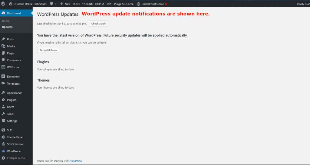 Wordpress manual updates