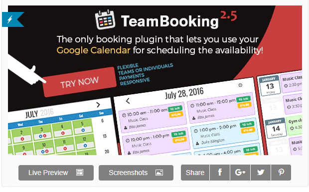 Team booking calendar plugin for upcoming events